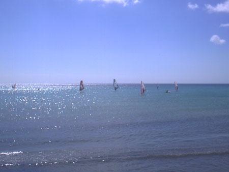 surfers sotavento
